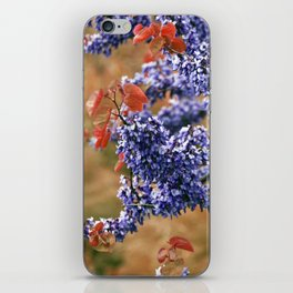 Blossoms of Spring iPhone Skin