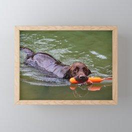 swimming doggo Framed Mini Art Print