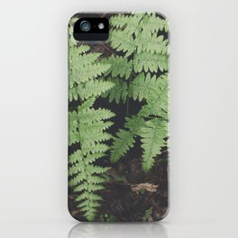 John Muir Fern, Yosemite iPhone Case