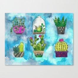 Succulent Collection Canvas Print