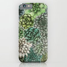 An Assortment of Succulents Slim Case iPhone 6