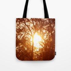 Canopy Sunrise Tote Bag