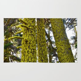 Lichen Madness - Crater Lake National Park Rug
