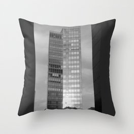 Low Flying Birds Throw Pillow
