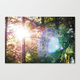 Visitor from the Sun Canvas Print