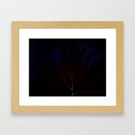 Midnight Forest Framed Art Print
