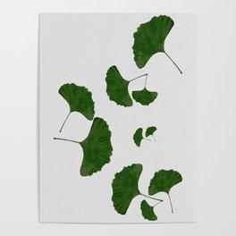 Ginkgo Leaf I Poster