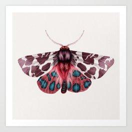 Garden Tiger Moth Art Print