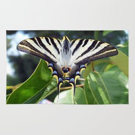 Swallowtail Buttterfly Resting on Oleander Leaves Rug