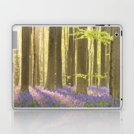 Blooming bluebell forest of Hallerbos in Belgium in morning sunlight Laptop & iPad Skin