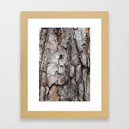 Natural Bark Wood Photo Framed Art Print