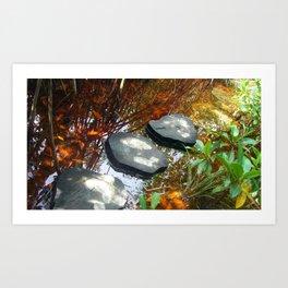 Trail to cenote Art Print