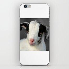 Kid Goat iPhone Skin