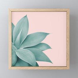 Agave Finesse #3 #tropical #decor #art #society6 Framed Mini Art Print