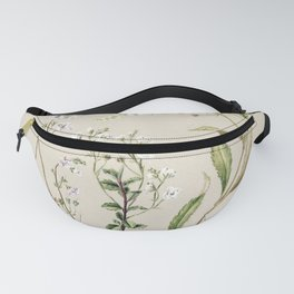 Antique plant Veronica drawn by Sarah Featon (1848-1927) Fanny Pack