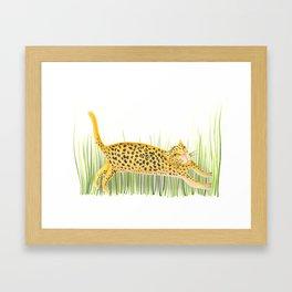 Yaguareté Framed Art Print