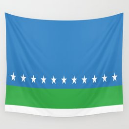 Flag of San Jose Costa Rica Wall Tapestry