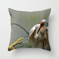 Links to the Past Throw Pillow