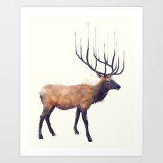 Elk // Reflect (Right) Art Print