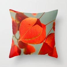 Orange Throw Pillow