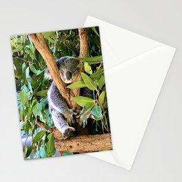 Lone Pine Koala Sanctuary, Brisbane Australia  Stationery Cards