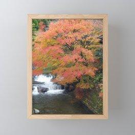 beautiful fall foliage in japan Framed Mini Art Print