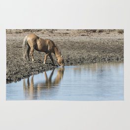 Reflection of a Stallion Rug