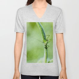 Common green cricket insect on branch Unisex V-Neck