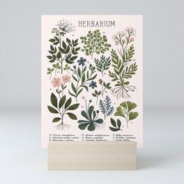 Herbarium ~ vintage inspired botanical art print ~ white Mini Art Print