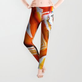 The Vivid Imagination of Nature, Layers of Agate Leggings