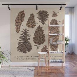 Pinecones Wall Mural