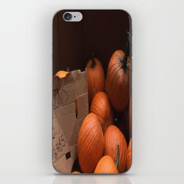 Pumpkins In a Box! iPhone Skin