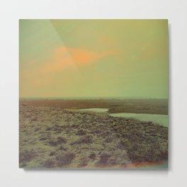 Lonely Landscape Metal Print