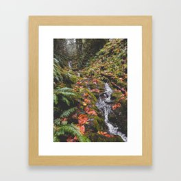 PNW Fall Waterfall Framed Art Print