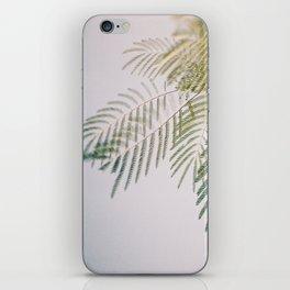 leaf iPhone Skin