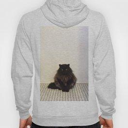 A Lone Cat  Hoody