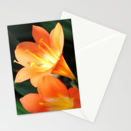 Peachy Petals Stationery Cards