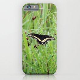 Black Swallowtail Butterfly in the Grass iPhone Case