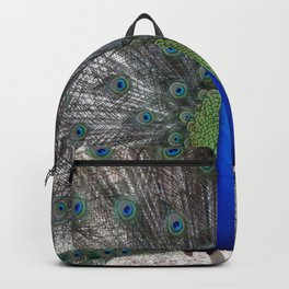 peacock bird animals pen plumage Backpack