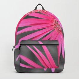 Gerbera.... Backpack