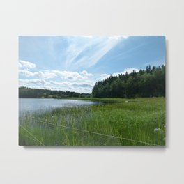Wonderful lake in the forest Metal Print