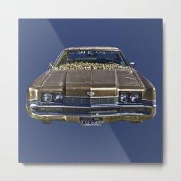 carro4 Metal Print