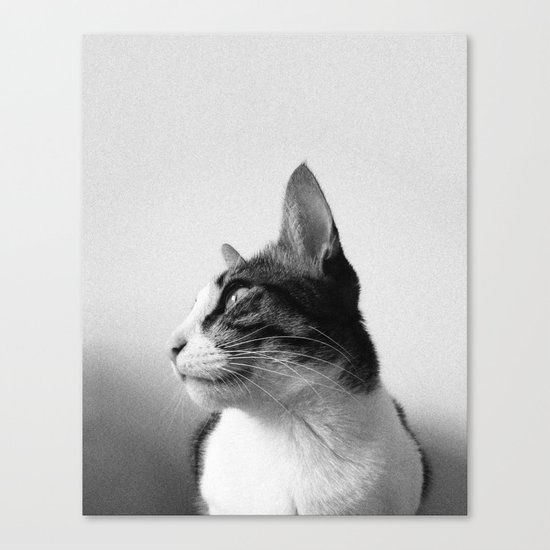 Thats my Cat !! 05 Canvas Print