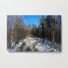 Forest road with white snow Metal Print