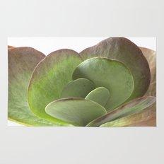 Succulent Big Leaf Rug