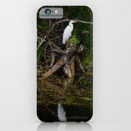 Great egret bird. Ardea alba. iPhone Case