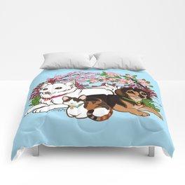 Contentment Comforters