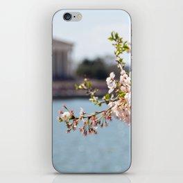 Sakura Matsuri iPhone Skin