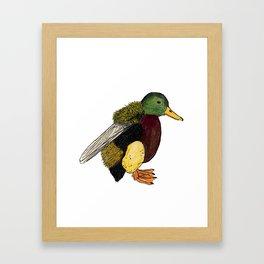 Bumbleduck Framed Art Print