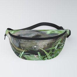 Dachshund Doxie Fanny Pack